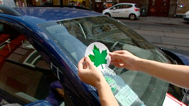 Znalezione obrazy dla zapytania zielony liść na samochodzie