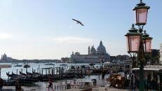 Wielka woda w Wenecji (PAP/EPA/ANDREA MEROLA)