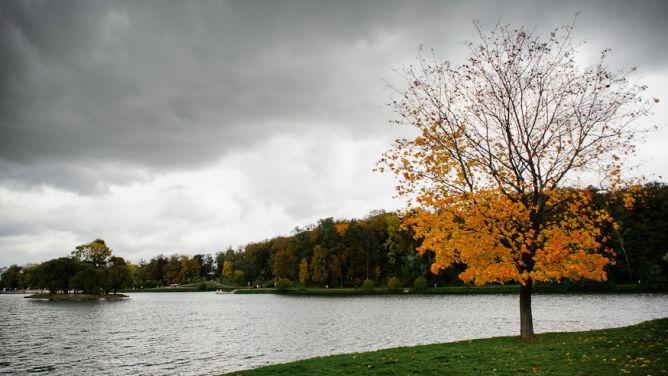 Prognoza pogody na dziś: pochmurno. 10-16 stopni