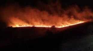 Nagranie z palącego się lasu Ashdown (Nick Bowlby/Twitter)